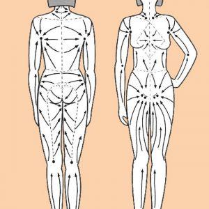 Направление лимфодренажного массажа